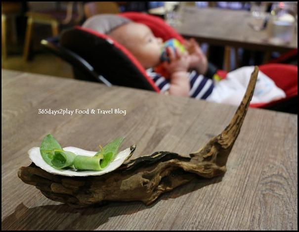 Bridge - Oyster Leaf