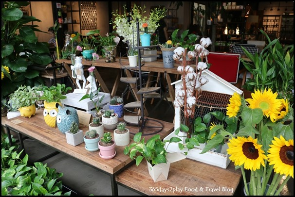Knots Cafe and Living (5)