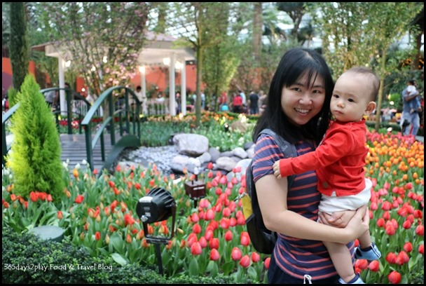 Gardens by the Bay Tulip Mania 2017 (16)