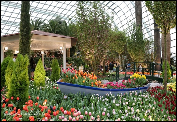 Gardens by the Bay Tulip Mania 2017 (17)