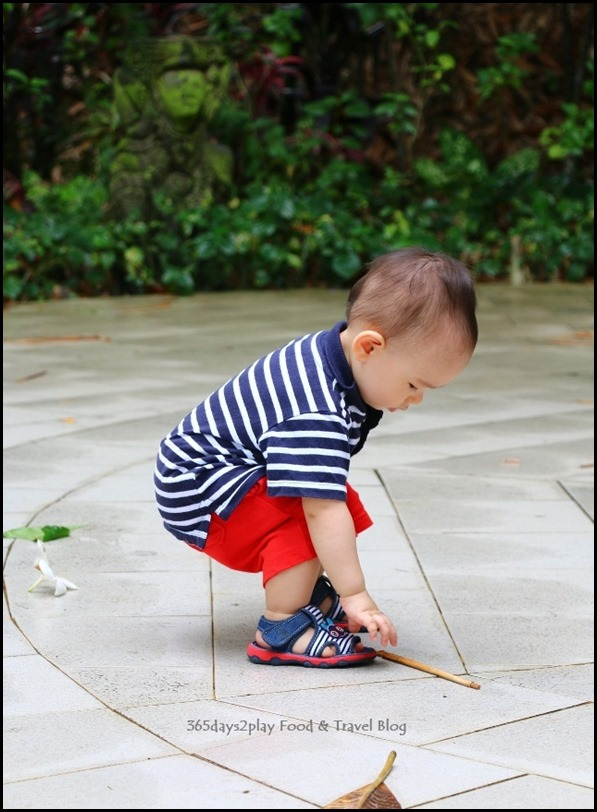 Baby Edward having fun at Hort Park (15)