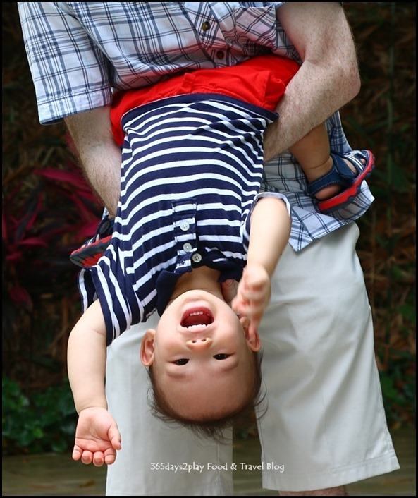 Baby Edward having fun at Hort Park (17)