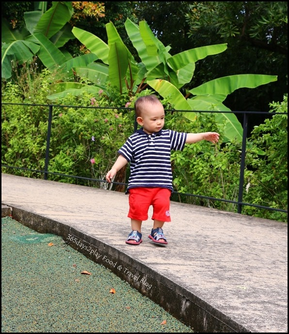 Baby Edward having fun at Hort Park (24)