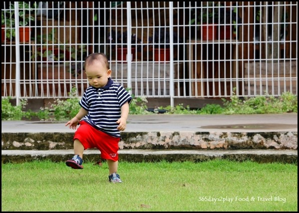 Baby Edward having fun at Hort Park (2)