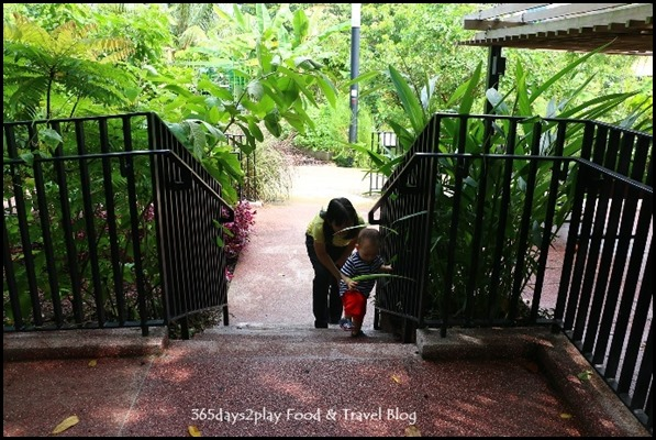 Baby Edward having fun at Hort Park (32)