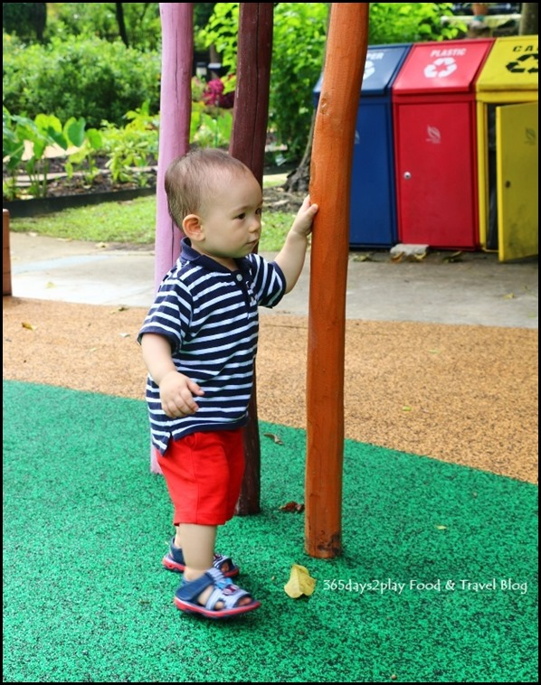 Baby Edward having fun at Hort Park (38)
