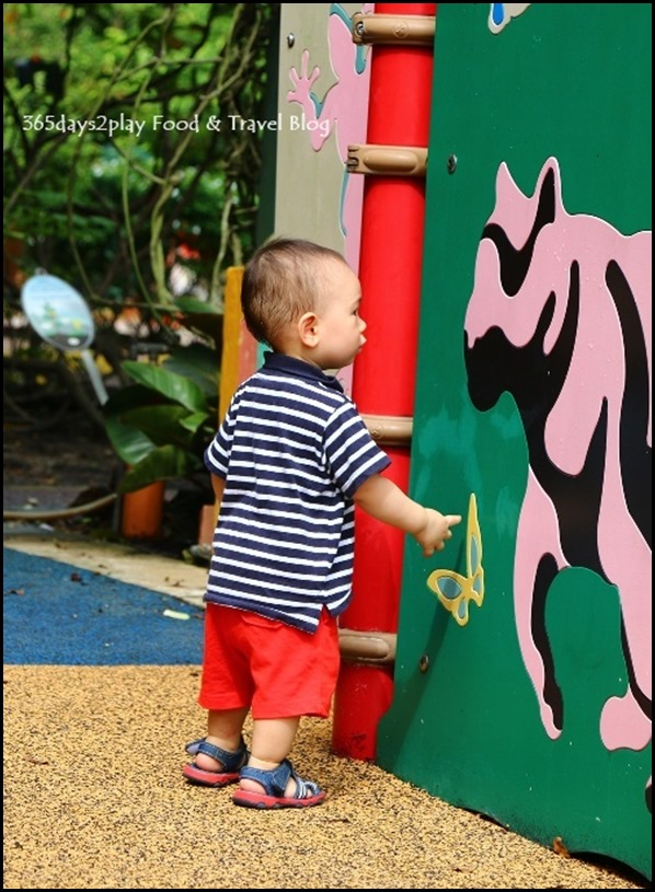 Baby Edward having fun at Hort Park (39)