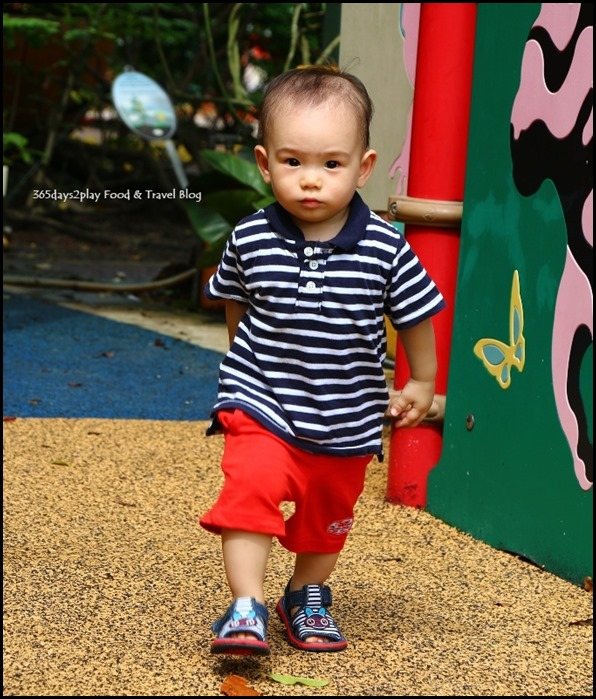 Baby Edward having fun at Hort Park (40)