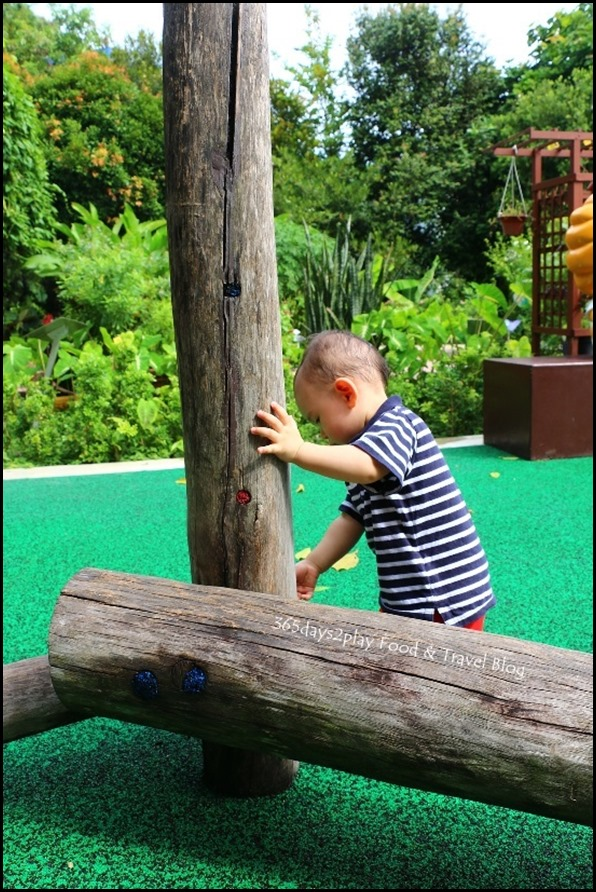 Baby Edward having fun at Hort Park (41)