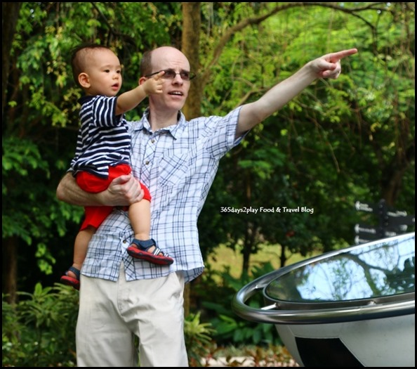 Baby Edward having fun at Hort Park (46)