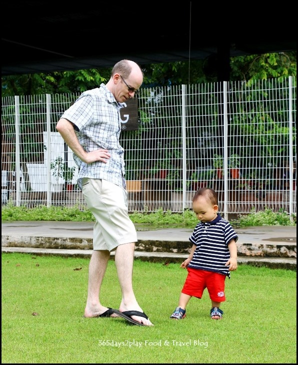 Baby Edward having fun at Hort Park (6)