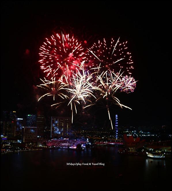 NDP Fireworks (1)