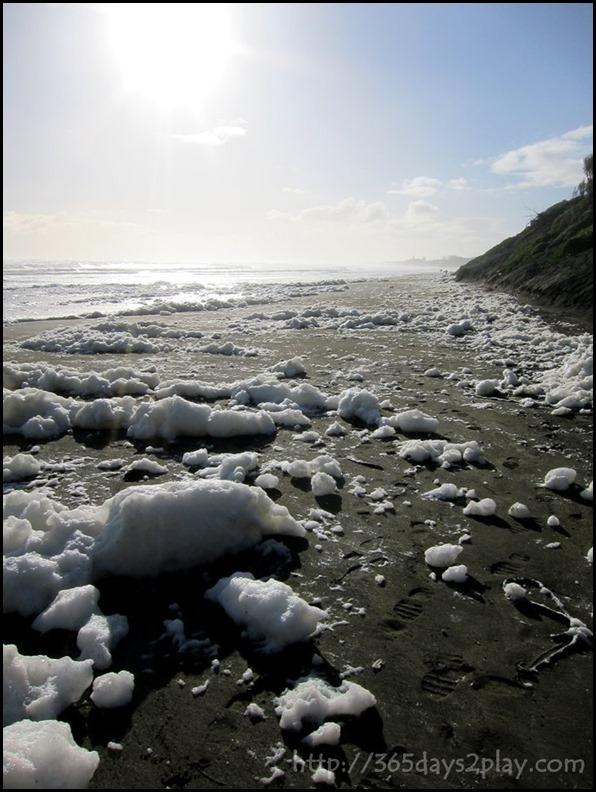 Muriwai Black Sand foamy beach