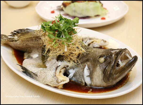 Steamed Black Pearl Garoupa with Superior Soy Sauce