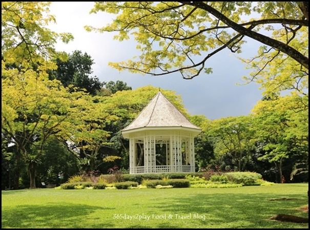 Singapore Botanic Gardens Bandstand and raintrees