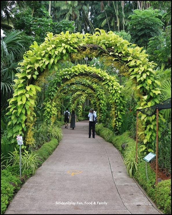 Singapore Botanic Gardens Heritage  (11)