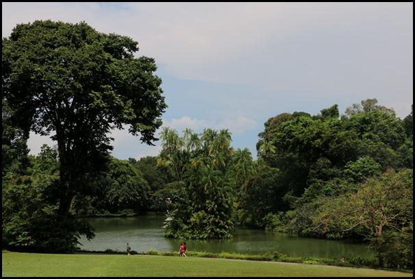 Singapore Botanic Gardens Heritage  (6)