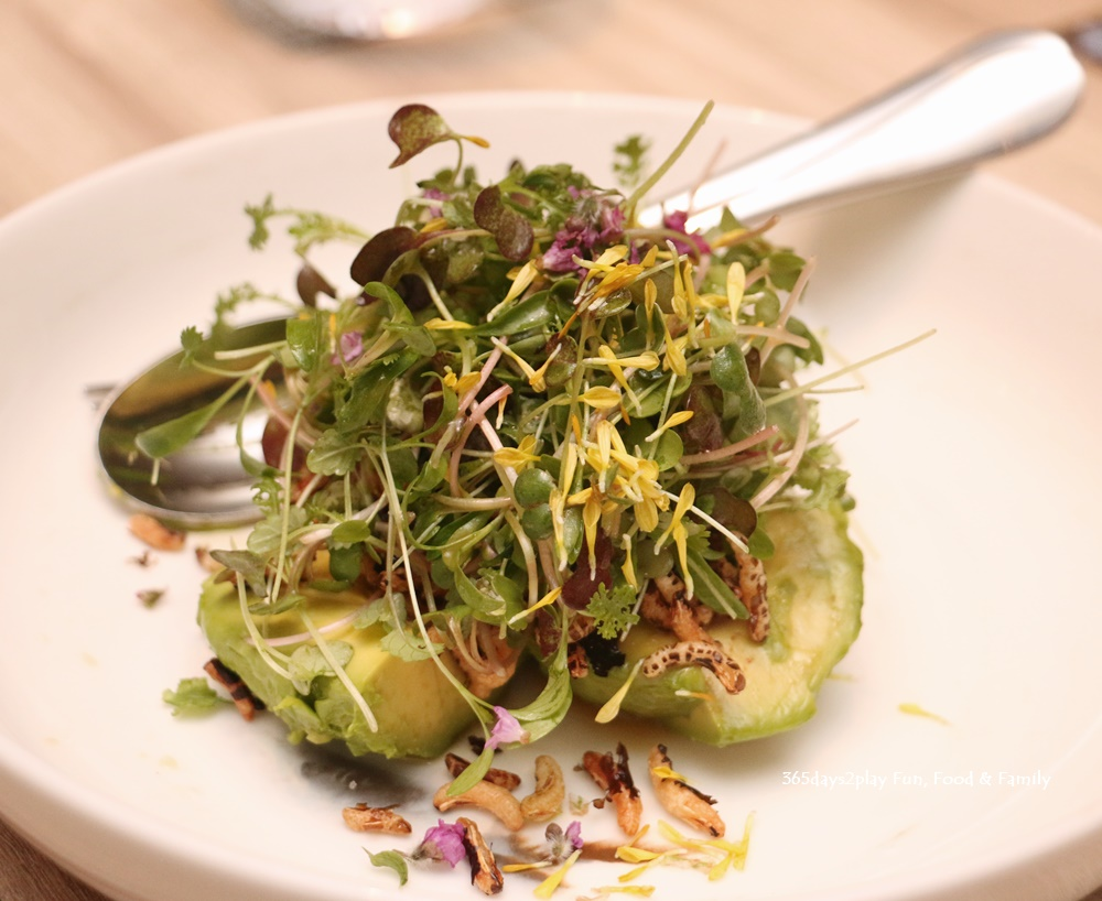 Avocado Salad, Mixed Baby Cresses $18
