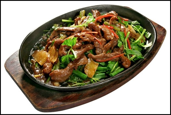 Venison with Ginger and Scallion