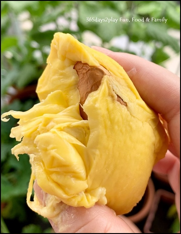 8 Durian (1)
